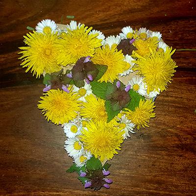 composition florale avec les fleurs du jardin